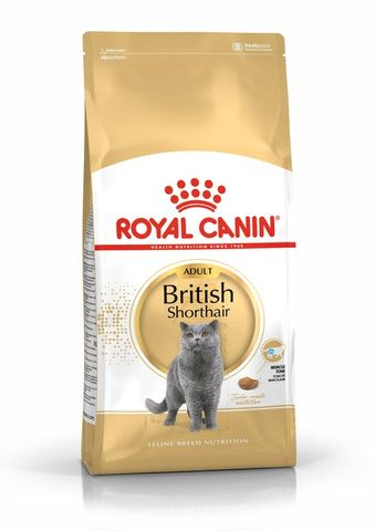 RC Cat British Shorthair 10kg