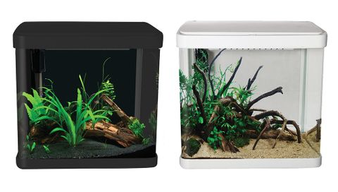 Aqua One Lifestyle 21 Glass Aquarium  21L White