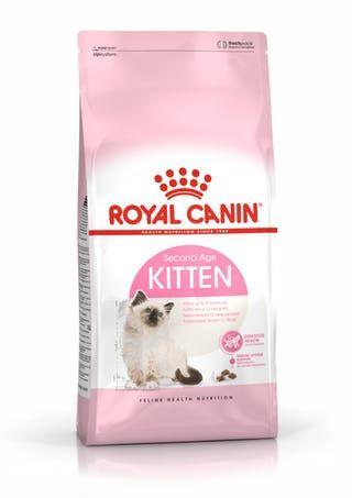 RC Cat Kitten  2kg