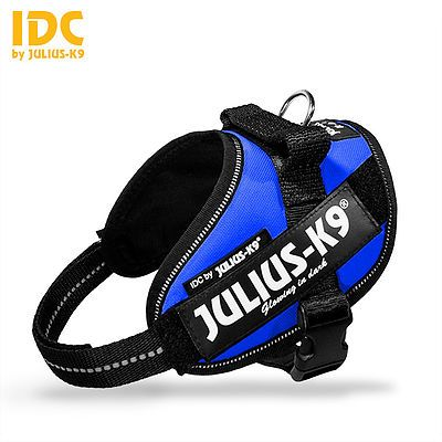 Julius K9 Powerharness Blue