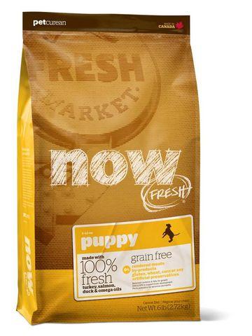 NOW Puppy Grain Free 11.34kg