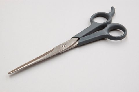 Kazoo Grooming Scissors