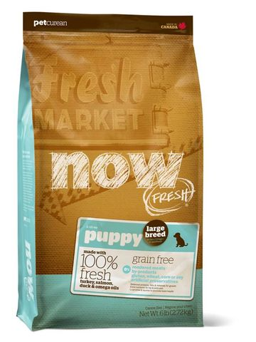 NOW Puppy Large Breed Grain Free 11.34kg