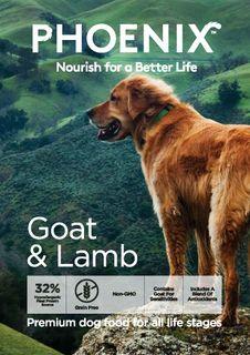 Phoenix Dog Goat & Lamb 13kg