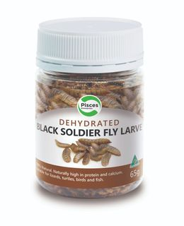 PISCES DRIED BLACKSOLDIER FLY LARVAE 65G