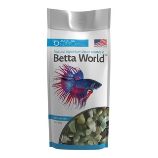 Betta World