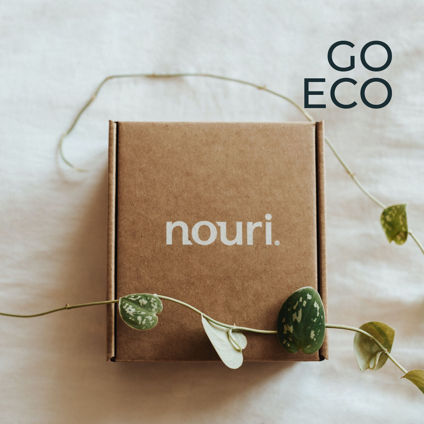 Pronto Packaging - Go Eco