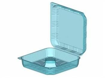 Extra Large Clear Container With Lid