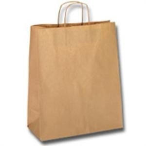 Paper Carry Bag Small 350 x 260 x 110 mm