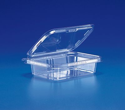 540Ml Rectangle Tamper Evident Container