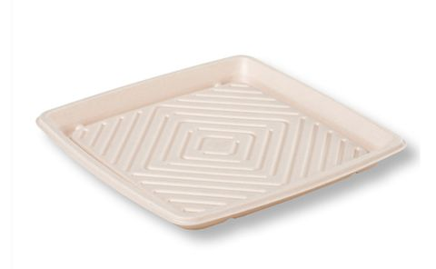 Sugarcane Catering Tray Small 250x250x40mm