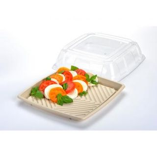 PET Lid for Medium Sugarcane Catering Tray