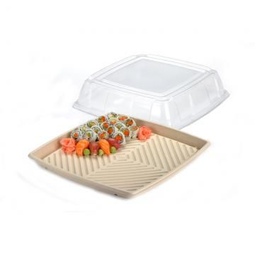 PET Lid for Large Sugarcane Catering Tray