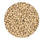 PEPPERCORNS WHOLE WHITE 1KG W/FARM