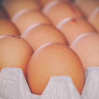 Eggs Medium Cater Pack Trays 7.5Kg 180'S