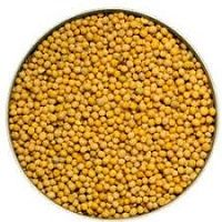 MUSTARD SEED YELLOW 500GM QFS