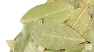 BAY LEAVES WHOLE 250GM WINDSOR FARM