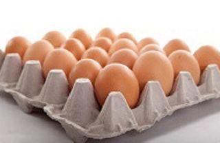 Eggs Ex Large Free Range 700G 15 Dozen