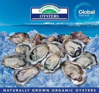 @ OYSTERS 1/2 SHELL PREMIUM 10 DOZ CLEVEDON COAST