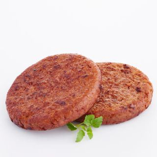 Burgers Plant BASE Protein 125G X 24 100% NOT
