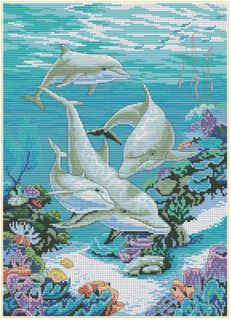 Comp Cross Stitch Kit- Swimming Dolphins