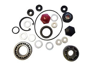 Oil seals kit for Maruyama pump