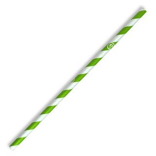 Biopak Jumbo Straw 10mm Green Stripe Slv 100