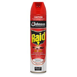 Raid One Shot Crawling Insect Surface Spray Odourless 450gm