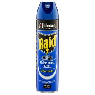 Raid  Insect Killer Odourless 400G