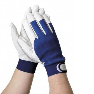 Gloves Delicate Touch Small-Medium