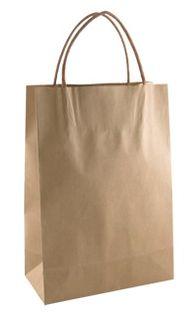 BD Brown Loop Handle Bag Kraft Junior Ctn 250