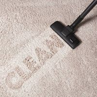 Solve Carpet Cleaning Challenges