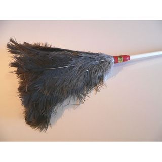 No. 10 Ostrich Feather Duster - Medium