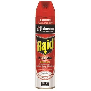 Raid 1 Shot Crawling Insect Killer-450g