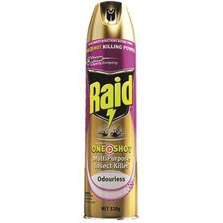 Raid 1shot Multipurpose Insect Kill-320g