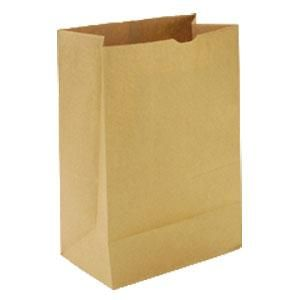 BROWN # 16 SOS 380  X 240 + 120MM PAPER BAG - 250 - CTN