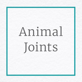 Animal Joints for Toy Making
