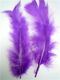 Feathers Purple 10g