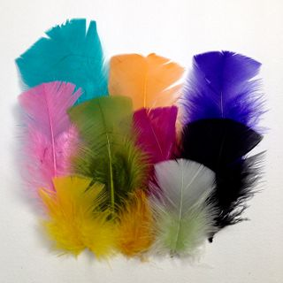 Craft Feathers Med Mixed Pkt 20