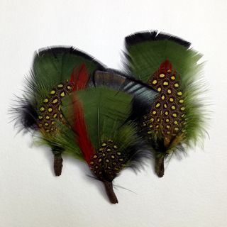 Craft Feathers Black/Multi Pkt 3