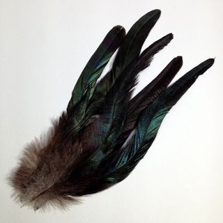 Craft Feathers Black/Green Multi Pkt 6