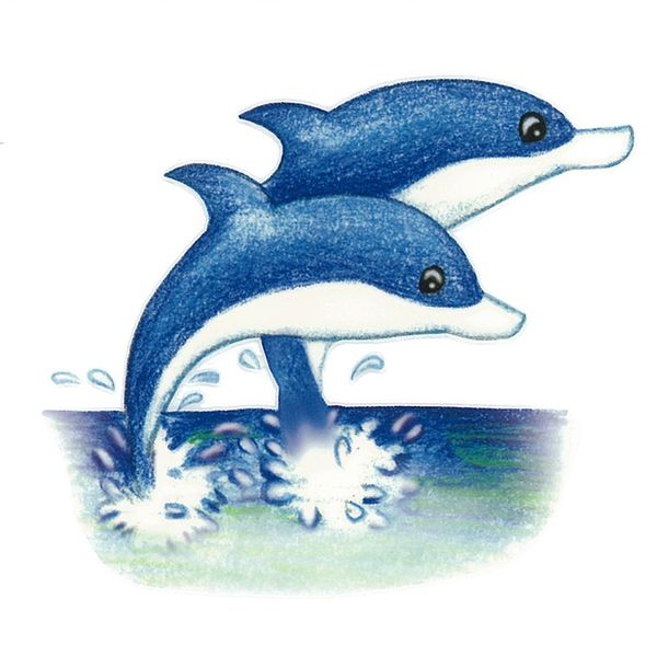 Dec/Transfers Two Dolphins