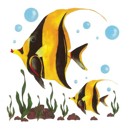Dec/Transfers Yellow/Black Fish