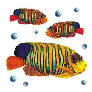 Dec/Transfers Yellow/Blue Fish