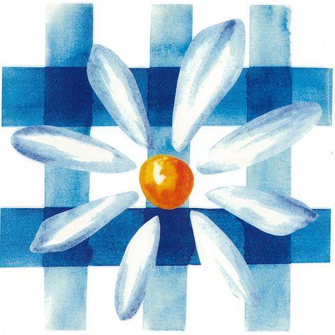 Dec/Transfers Blue Daisy Design