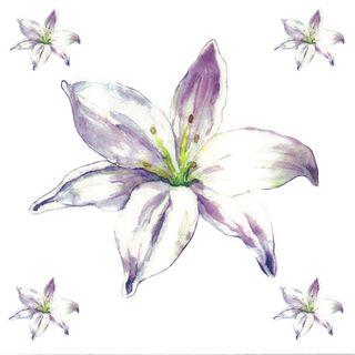 Dec/Transfers Mauve Flower