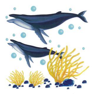 Dec/Transfers 2 Whales