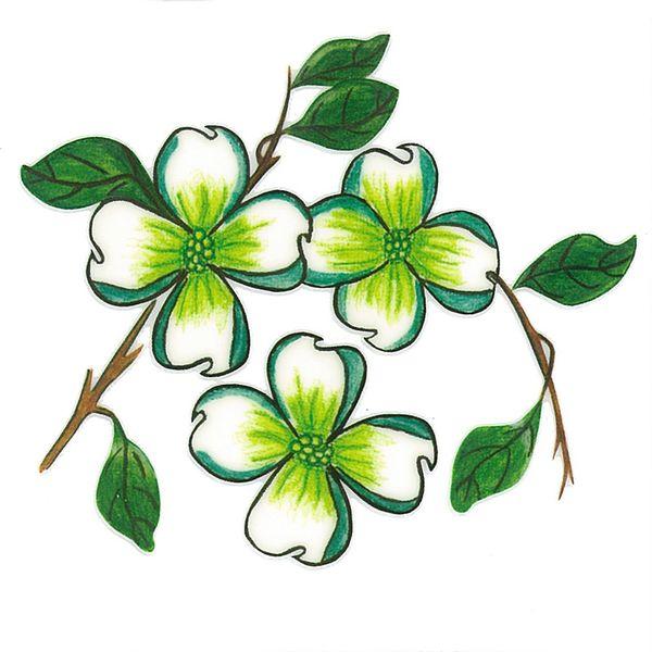 Dec/Transfers Green/White Flowers