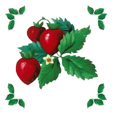Dec/Transfers Fruit Pattern