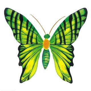 Dec/Transfers Green Butterfly